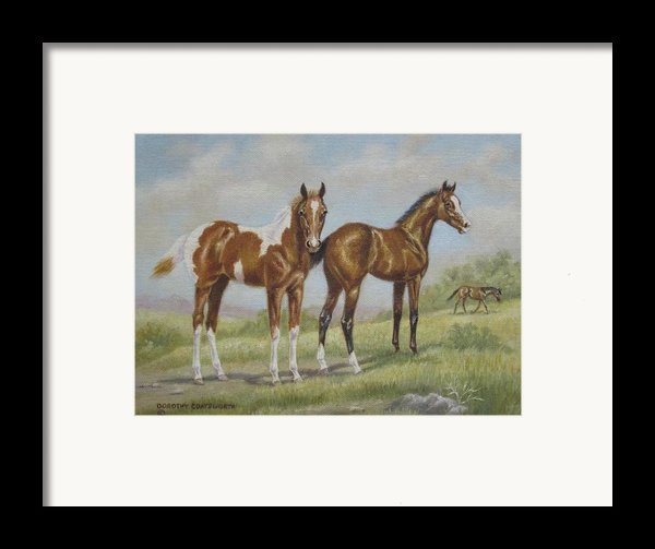 Foals In Pasture Framed Print By Dorothy Coatsworth