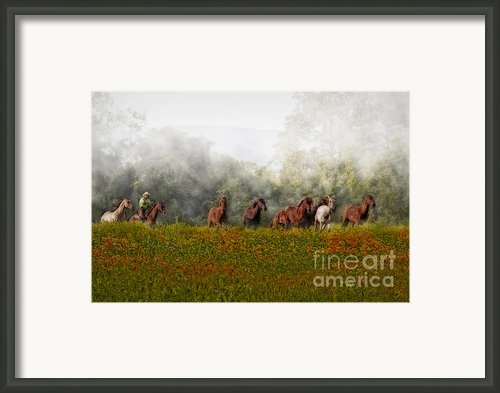 Foggy Morning Framed Print By Susan Candelario