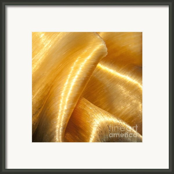 Folding Gold Framed Print By Author And Photographer Laura Wrede