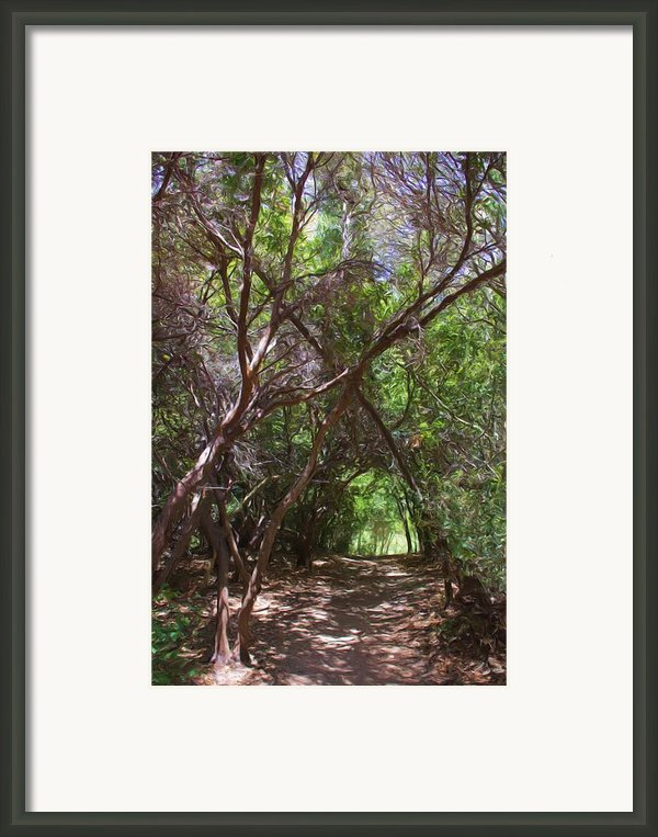 Follow Me Framed Print By Heidi Smith