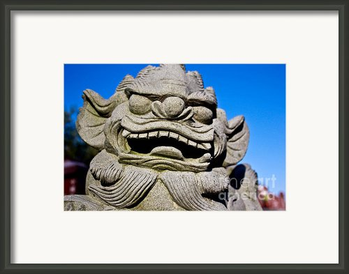 Foo Dog Framed Print By Extrospection Art