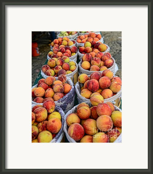 Food - Harvested Peaches Framed Print By Paul Ward