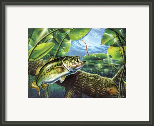 Fooled Again Bass Ii Framed Print By Jq Licensing