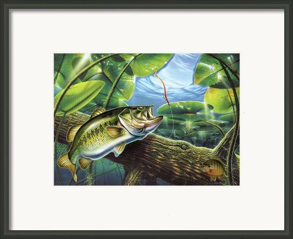 Fooled Again Bass Ii Framed Print By Jq Licensing