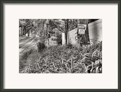 For The Love Of Dog Bw Framed Print By Jc Findley
