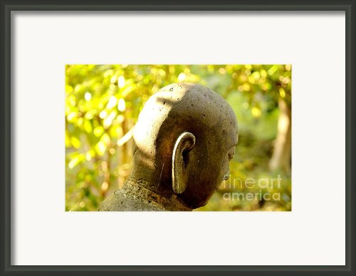 Forest Buddha Framed Print By Dean Harte