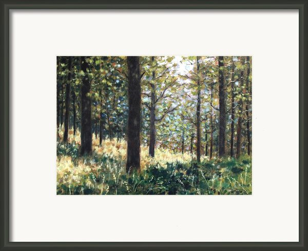 Forest- County Wicklow - Ireland Framed Print By John  Nolan
