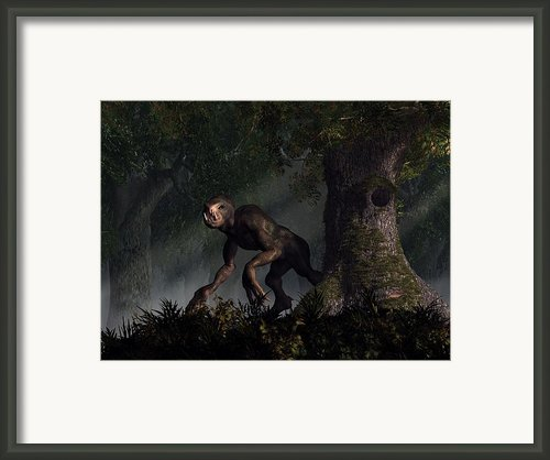 Forest Creeper Framed Print By Daniel Eskridge