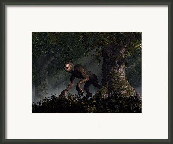 Forest Creeper Framed Print By Daniel Eskridge