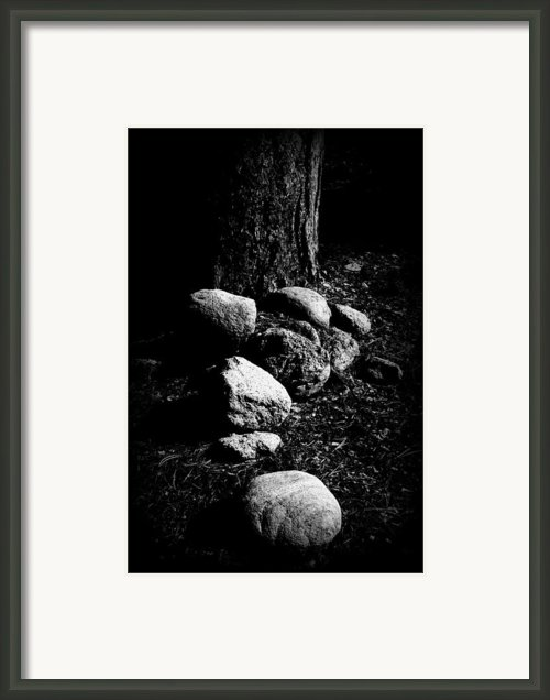 Forest Feng Shui Framed Print By The Forests Edge Photography - Diane Sandoval