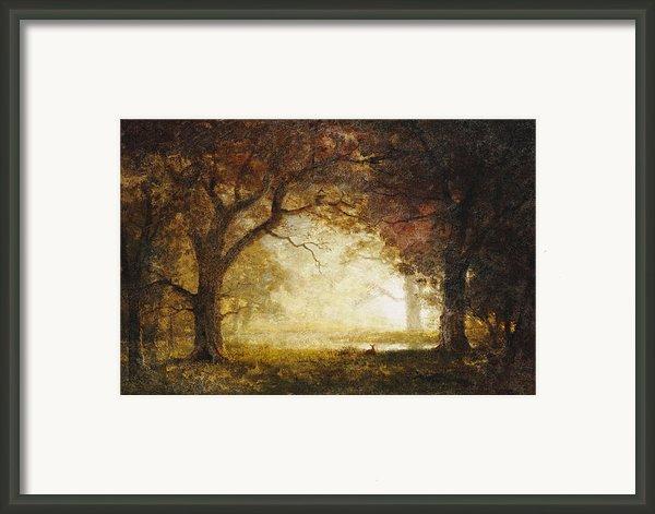 Forest Sunrise Framed Print By Albert Bierstadt