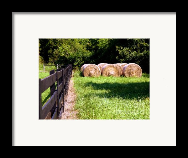 Four Corners Framed Print By Karen Wiles