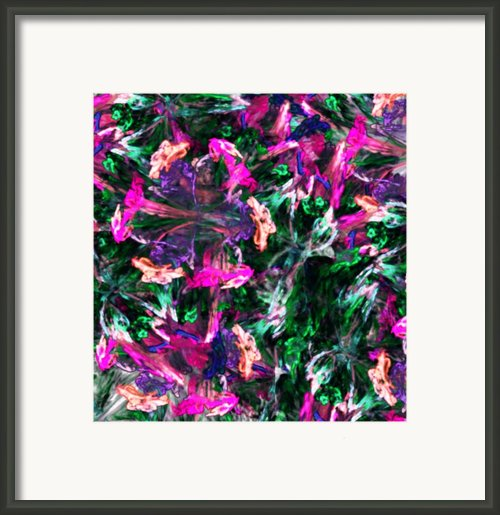 Fractal Floral Riot Framed Print By David Lane