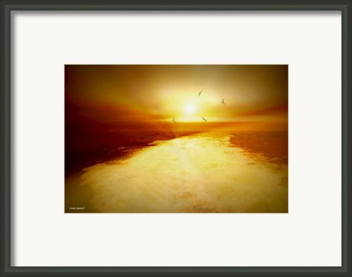 Freedom Escape Framed Print By Linda Sannuti