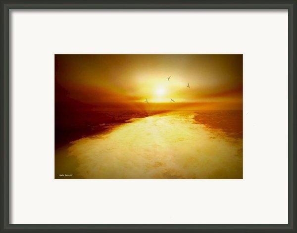 Freedom Escape Framed Print By Linda Sannuti