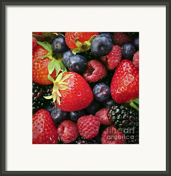 Fresh Berries Framed Print By Elena Elisseeva
