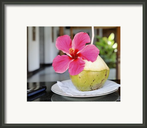 Fresh Coconut Milk Cocktail Framed Print By Kantilal Patel