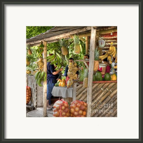 Fresh Fruits For The Day Framed Print By Heiko Koehrer-wagner