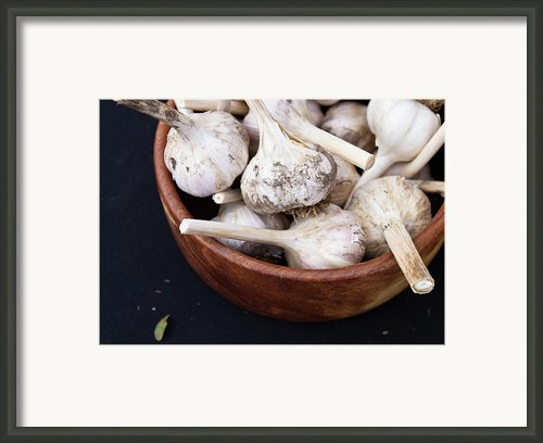 Fresh Garlic Framed Print By Tara Vorhes