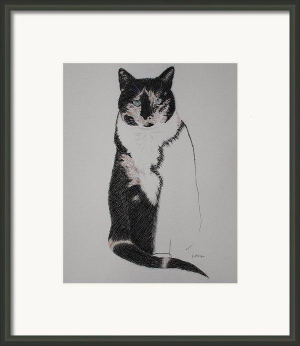 Friend Ii Framed Print By Patsy Sharpe