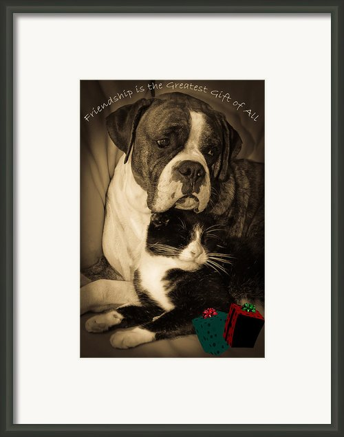 Friendship Is The Greatest Gift Of All Greeting Framed Print By Digiart Diaries By Vicky Browning