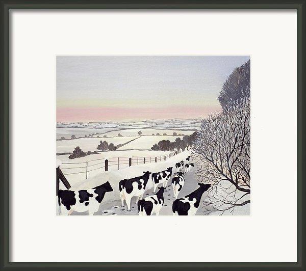 Friesians In Winter Framed Print By Maggie Rowe