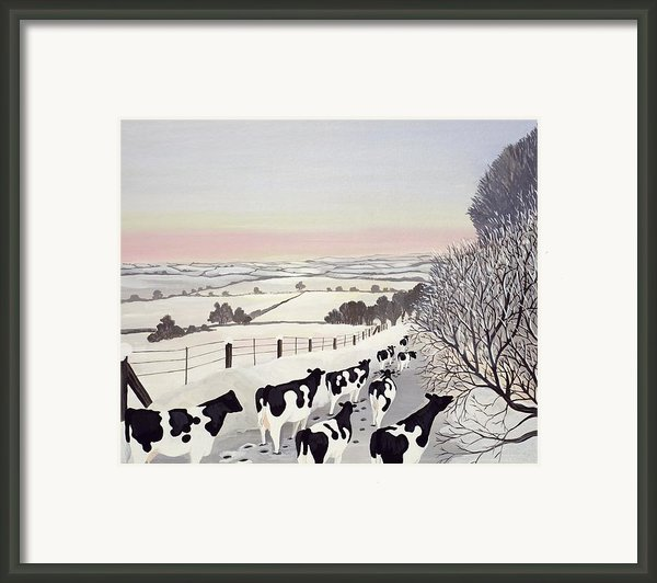 Friesians In Winter Framed Print By Maggie Rowe