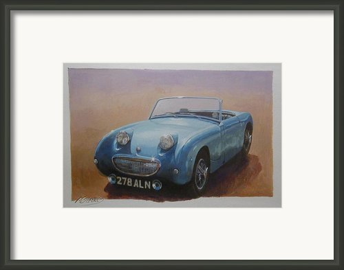 Frogeye  Framed Print By Mike  Jeffries