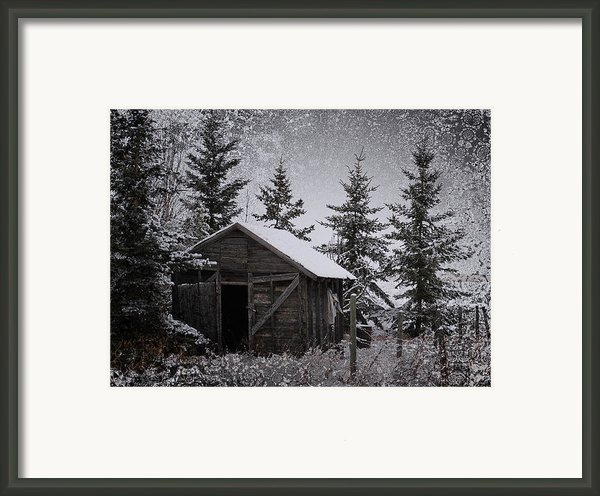 Frozen Shed Framed Print By Larysa Luciw