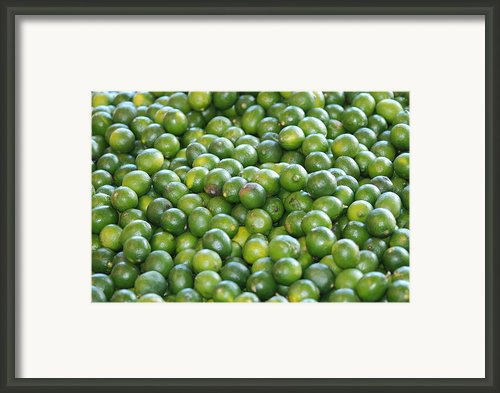 Fruit Bundle Framed Print By Francois Cartier