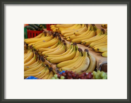 Fruit Of A Kind   Framed Print By Francois Cartier