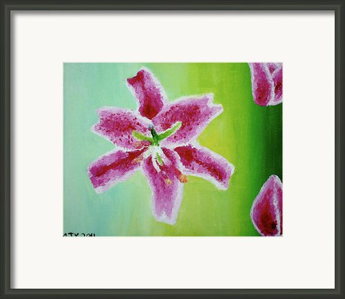 Full Bloom Framed Print By Missy Yake