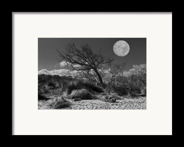 Full Moon Over Jekyll Framed Print By Debra And Dave Vanderlaan