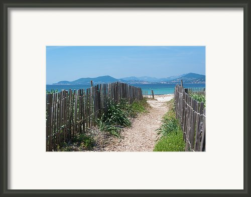 Ganivelles (fences) And Pathway To The Beach Framed Print By Alexandre Fundone
