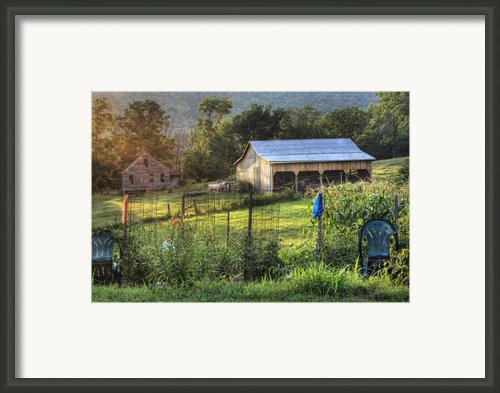 Garden View Framed Print By Pete Hellmann