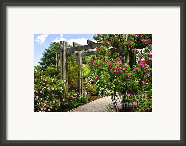 Garden With Roses Framed Print By Elena Elisseeva