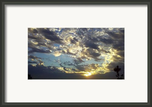 Gather-round Framed Print By Tracy Evans