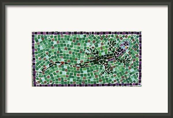 Gecko Framed Print By Jamie Frier
