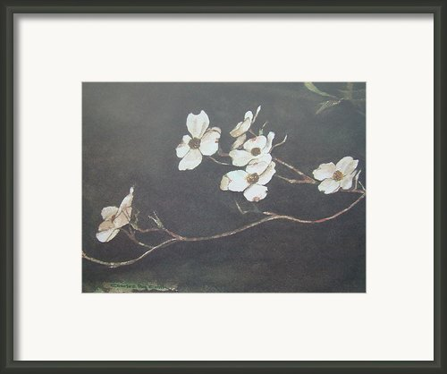 Georgia Dogwood Framed Print By Charles Roy Smith