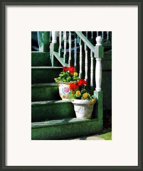 Geraniums And Pansies On Steps Framed Print By Susan Savad