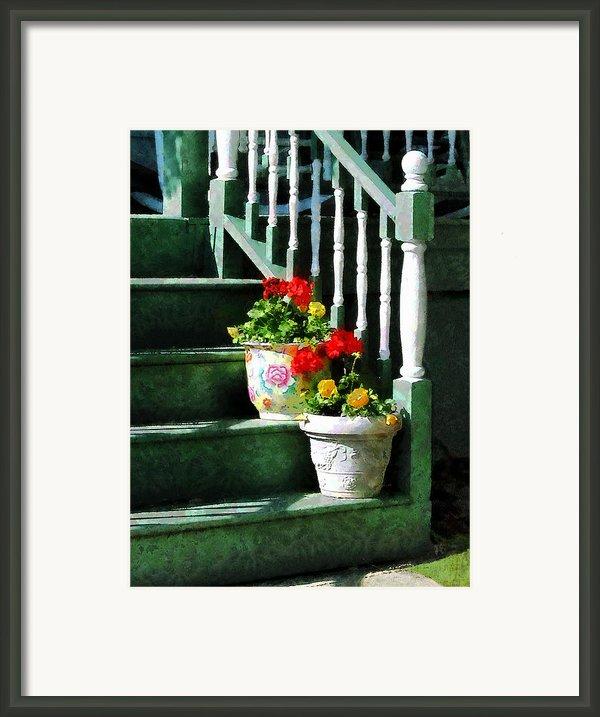 Geraniums And Pansies On Steps Framed Print By Susan Savad