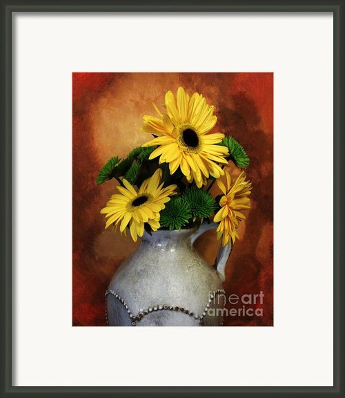 Gerber Yellow Daisies Framed Print By Marsha Heiken
