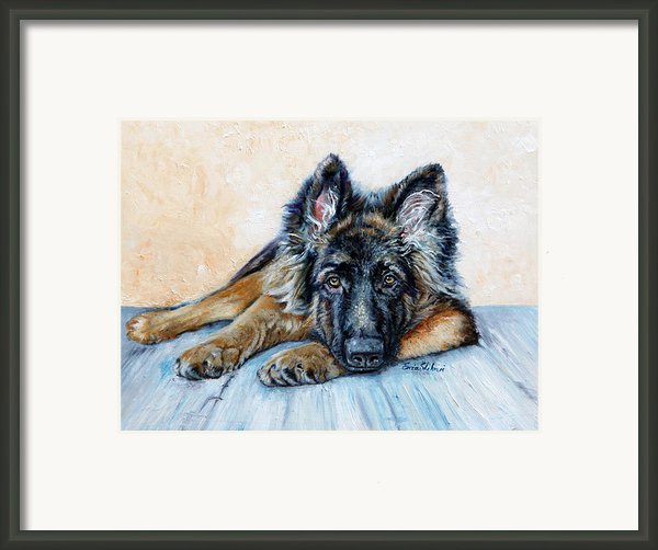 German Shepherd Framed Print By Enzie Shahmiri