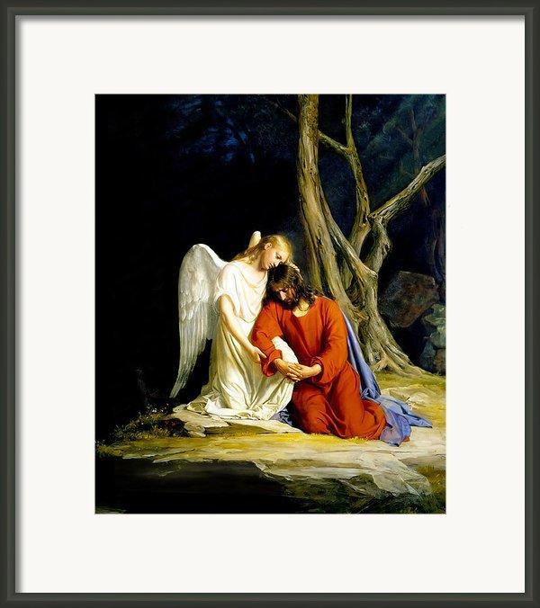 Gethsemane Framed Print By Carl Bloch