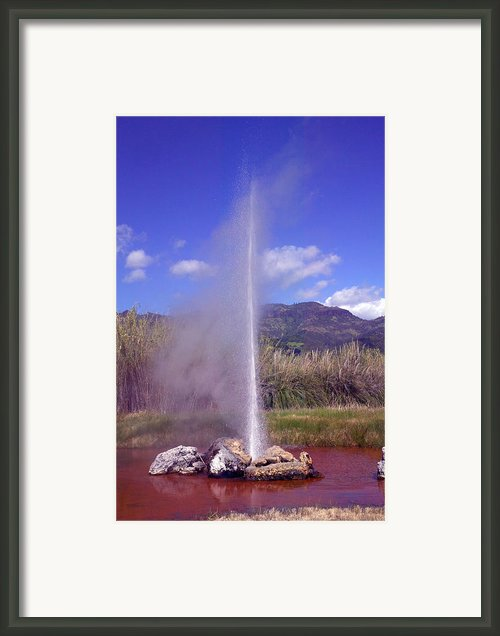 Geyser Calistoga Framed Print By Garry Gay