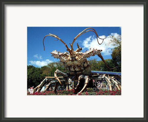 Giant Lobster Framed Print By Tammy Link