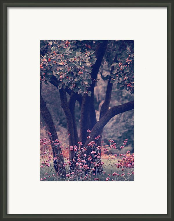 Give Life A Chance - V02b Framed Print By Aimelle