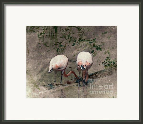 Gleaners Framed Print By Arne Hansen