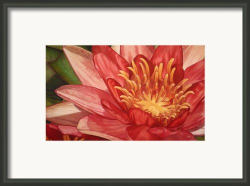 Glorious Framed Print By Melissa Tobia