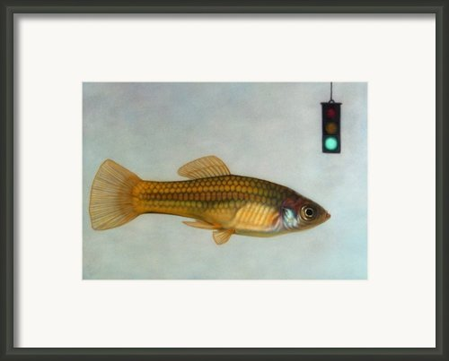 Go Fish Framed Print By James W Johnson